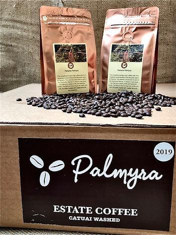 Palmyrasocialmedia.JPG