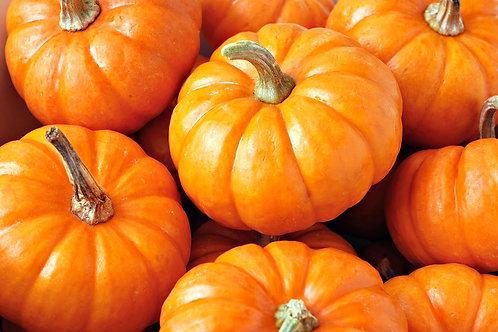 Pumpkin Pieces Body Butter