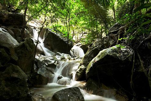 ป่าสงวนแห่งชาติป่าซับลังกาจังหวัดลพบุรี