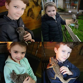 Little Critters Collage.jpg