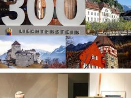 Национальный музей Лихтенштейна.  История одной картины.