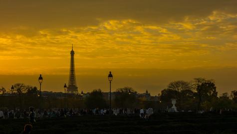 Ocre Paris