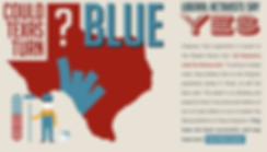Turn Texas Blue.png