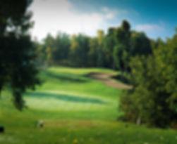 Pinegrove 2.jpg