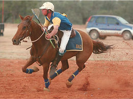 polocrosse action w.jpg