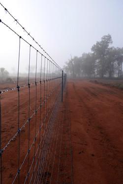 dog fence thurlby station