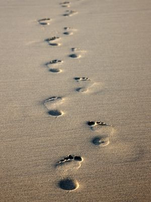 What if your memories made footprints?