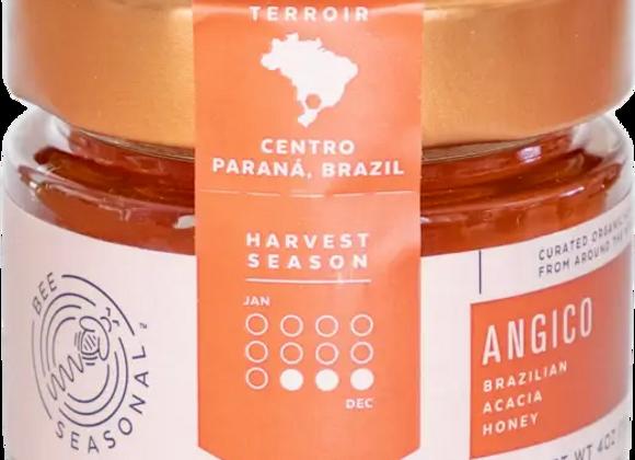 Organic Brazilian Acacia Honey