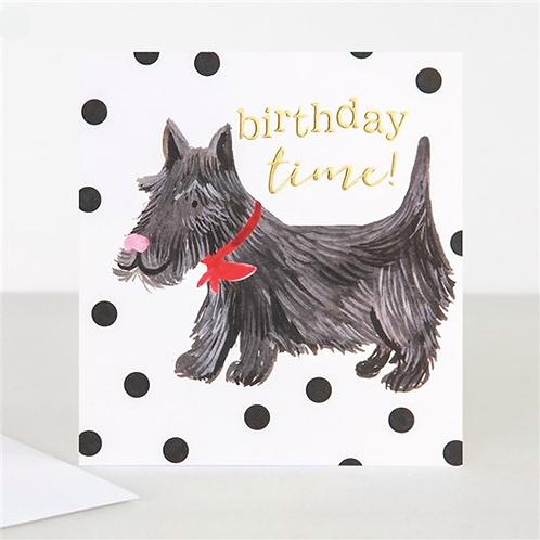 Birthday Time Dog