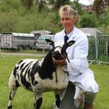 Dutch Spotted ewe lambs Beech Hay Buddle