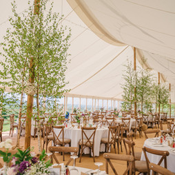 Luxury marquee with trees inside.jpg