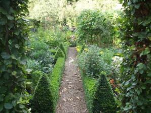 garden2 (23).JPG