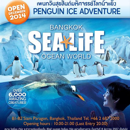 Sea Life Ocean World Aquarium