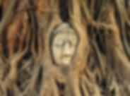 Wat.Mahathat.Ayutthaya.original.18711.jp