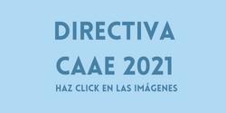 Directiva CAAE
