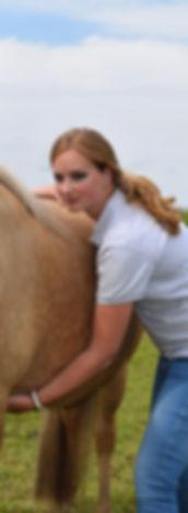 osteopathie bij paarden