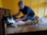 osteopathie behandlug Hund