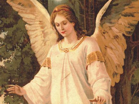Os anjos nos salvam!