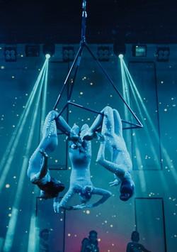 необычные цирковые номера Москва