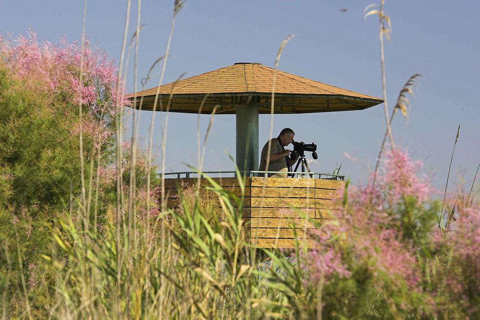 header-encanyissada-birdwatching.jpg