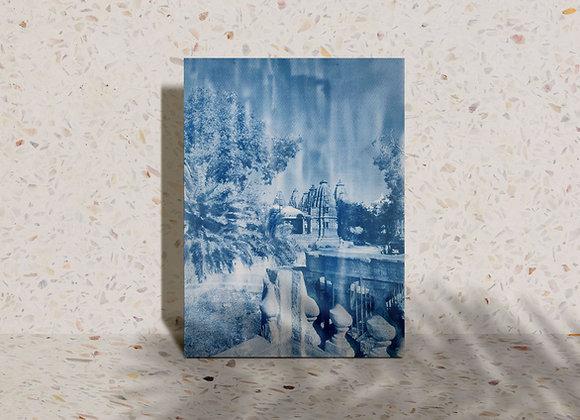 Mandore Gardens Cyanotype Photograh