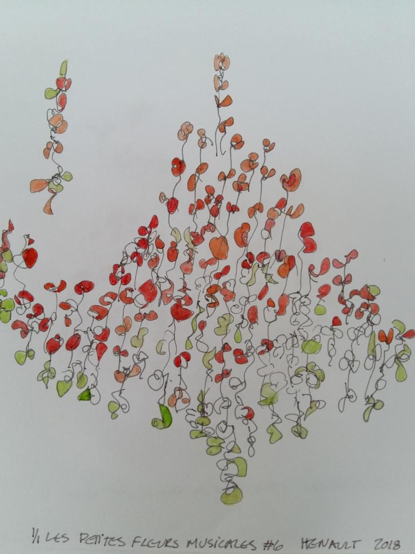 Les petites fleurs musicales #6