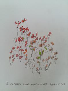 Les petites fleurs musicales # 7