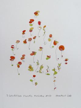 Les petites fleurs musicales #47