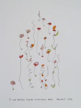 Les petites fleurs musicales #50