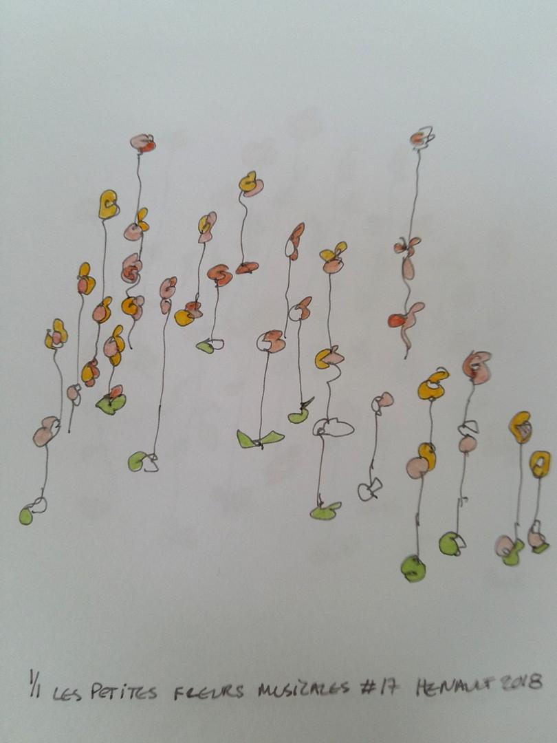 Les petites fleurs musicales #17