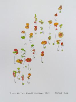 Les petites fleurs musicales #49