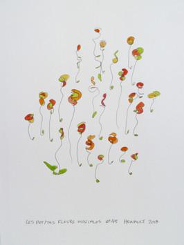 Les petites fleurs musicales #45