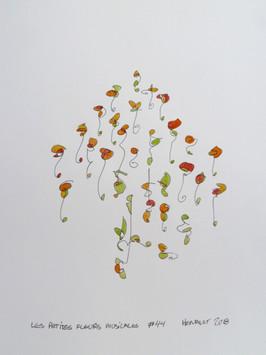 Les petites fleurs musicales #44