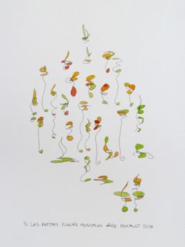 Les petites fleurs musicales #48