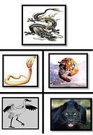 Quadrants des 5 formes animales Shaolin