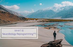 NeuroBiology Reprogramming™ - Dr. Dugast