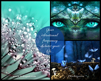 Your vibrational frequency dictates your