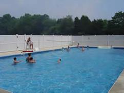 swimmers in pool.jpg