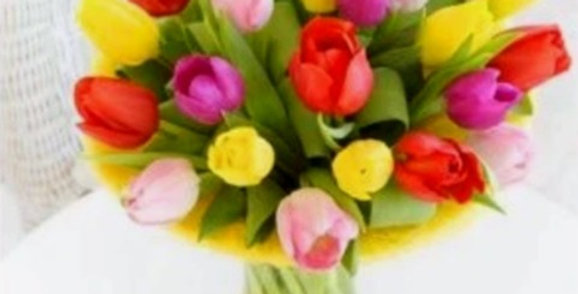 Bread and Butter Tulips