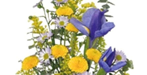 Bluetifully Yellow