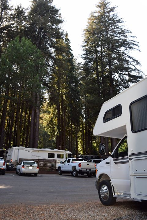 Santa Cruz Redwoods RV Resort