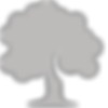 icons8-oak-tree-100.png
