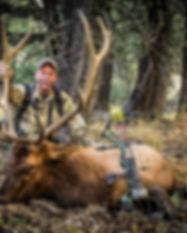 Tom Nelson 2017 MT Elk.JPG