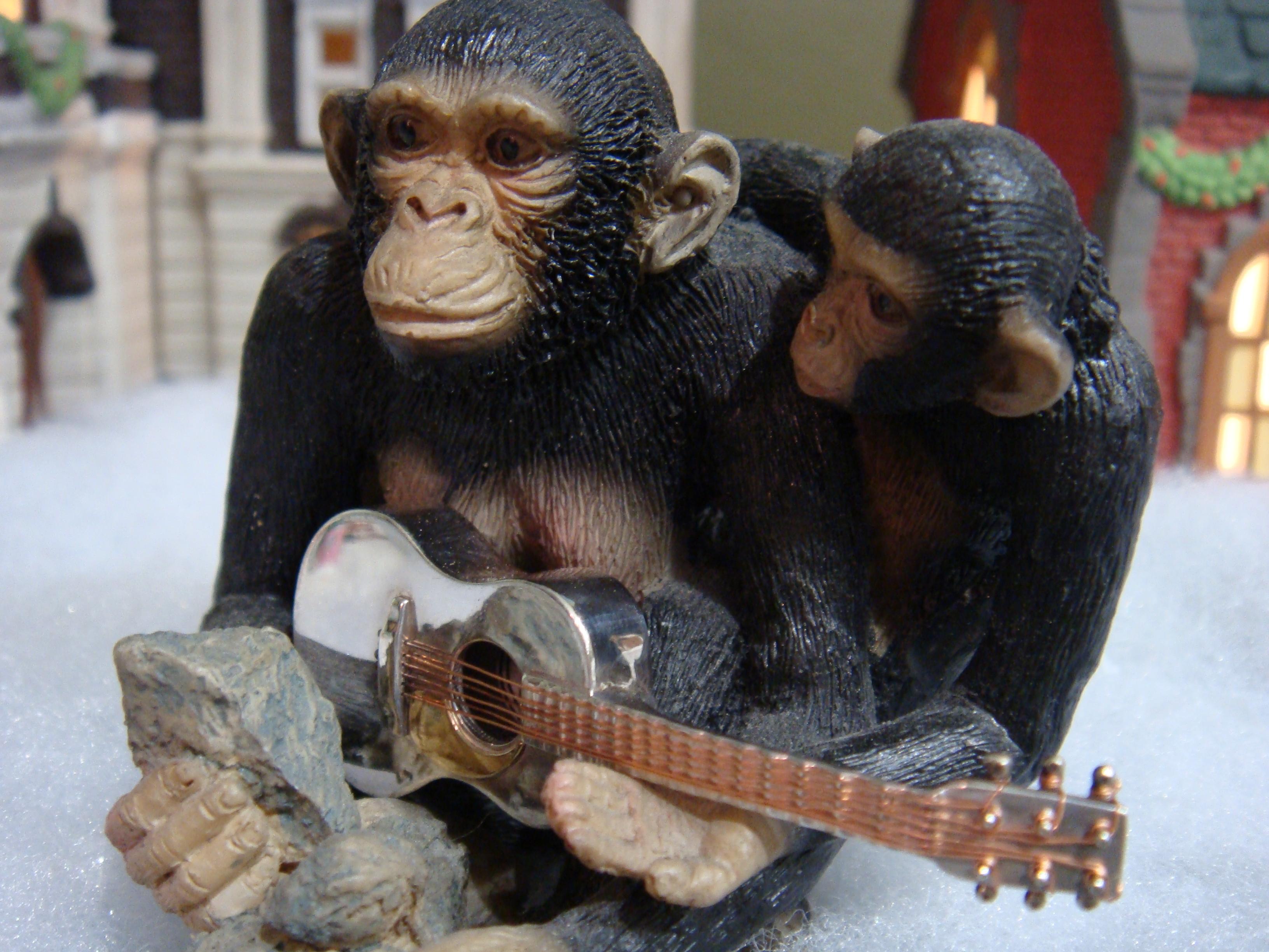 Little monkeys love to play 'em