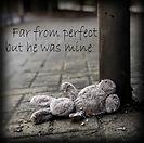 Far From Perfect.jpg