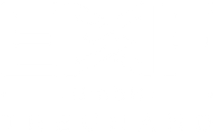 Logo Website EMF GmbH.png