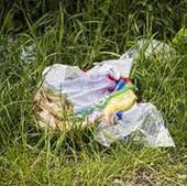 """""""Plastik in der Umwelt: Gefahr für Tier und Natur!"""""""