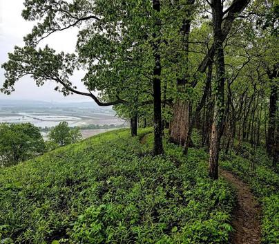 L3 - Fults Hill Prairie Nature Preserve