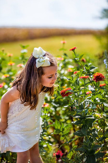 L2 - Baebler Educational Farm Wildflower
