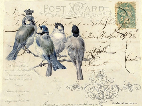 Monsieur Blue Bird